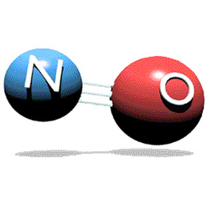 Kväveoxid - molekyl, bildas från nitrat i rödbetsjuice.