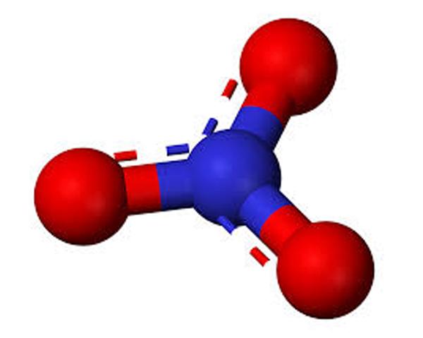 Nitratjon. Rödbetor innehåller nitrat som omvandlas till kväveoxid.