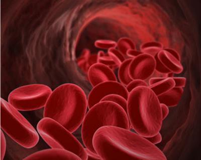 Blodkärl och och åderförkalkning - nitrat från rödbetor ökar kväveoxidbildning, ger friskare blodkärl.